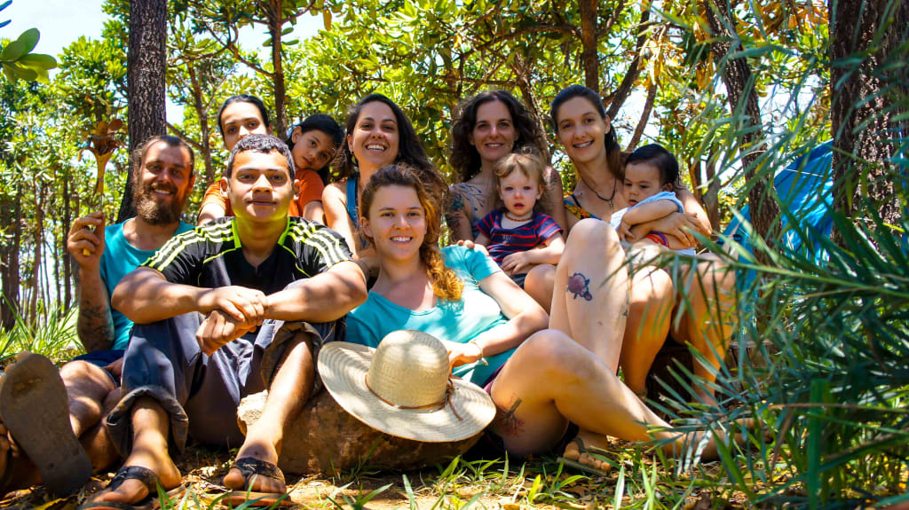 Direitos e deveres de um voluntariado ecológico