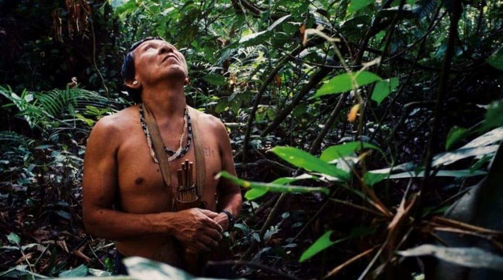 voluntariado-en-el-amazonas