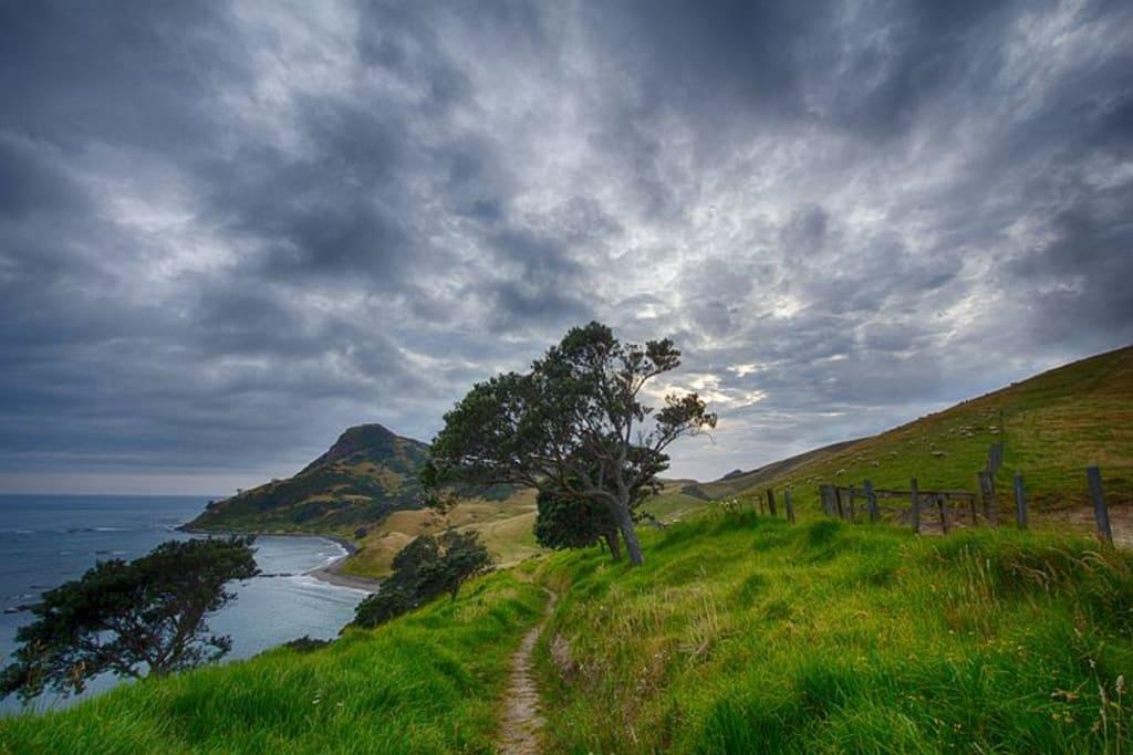 viajar-haciendo-voluntariados-mi-experiencia-en-nueva-zelanda