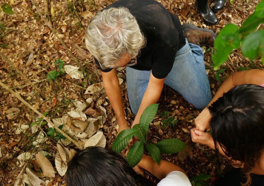 Foto de trabalho voluntário no Sítio Pituá