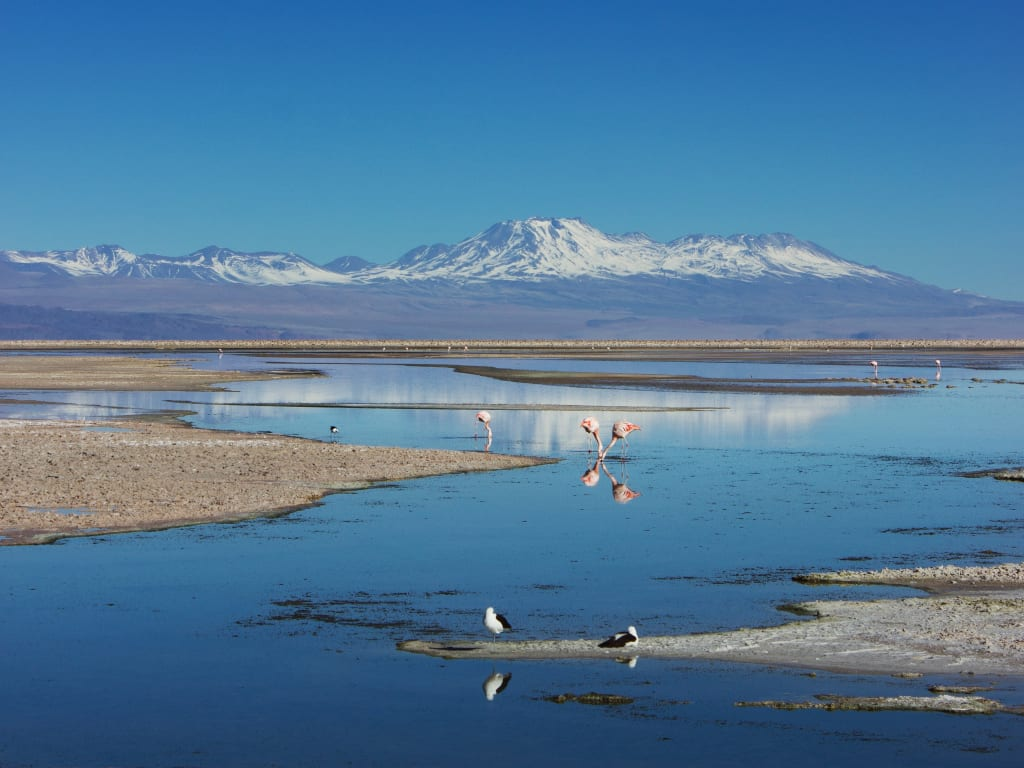 Dicas de como viajar barato para o Chile