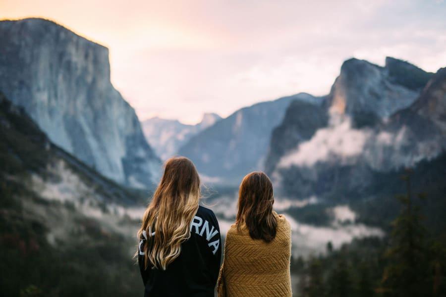 Choosing The Right Travel Companion