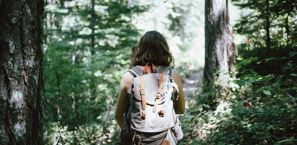 Viajante caminhando pela floresta