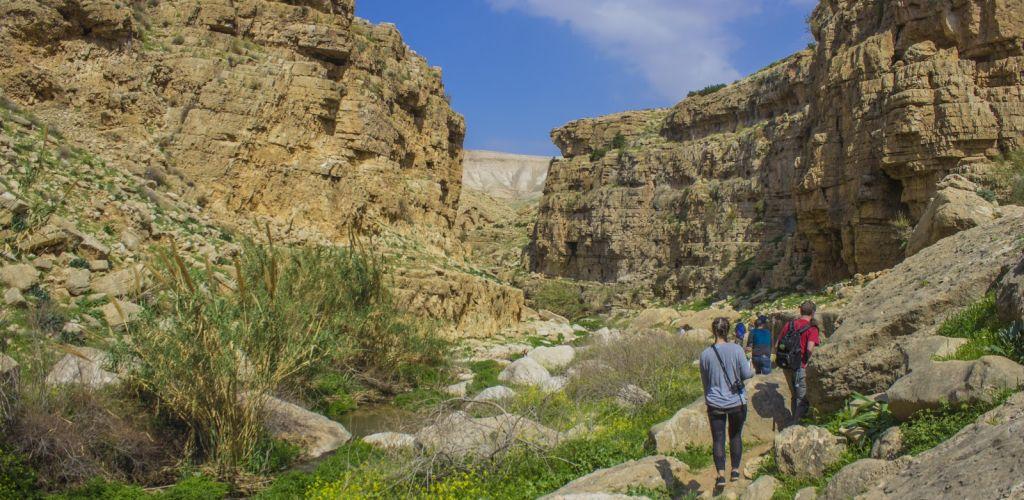 O Hiking Tour em Wadi Qelt começa repleto de verde e termina no meio do deserto