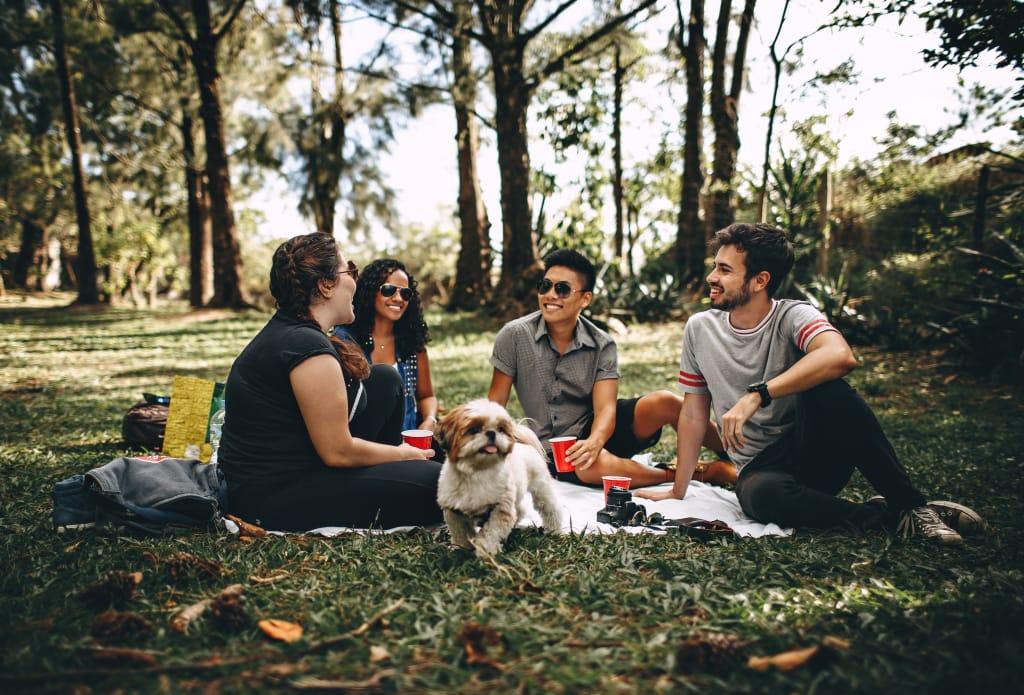 Grupo de amigos fazendo piquenique no parque
