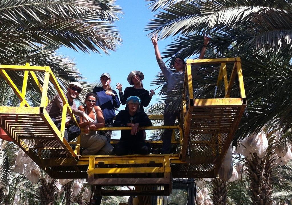 Fazenda orgânica em Israel para trabalho voluntário pelo mundo