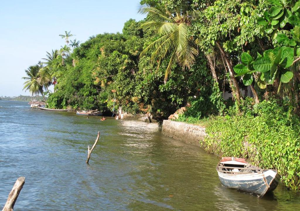 Maranhão tem opções para trabalho voluntário no Nordeste