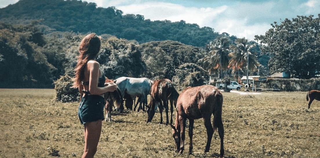 Best digital nomad blogs - Adventure Catcher