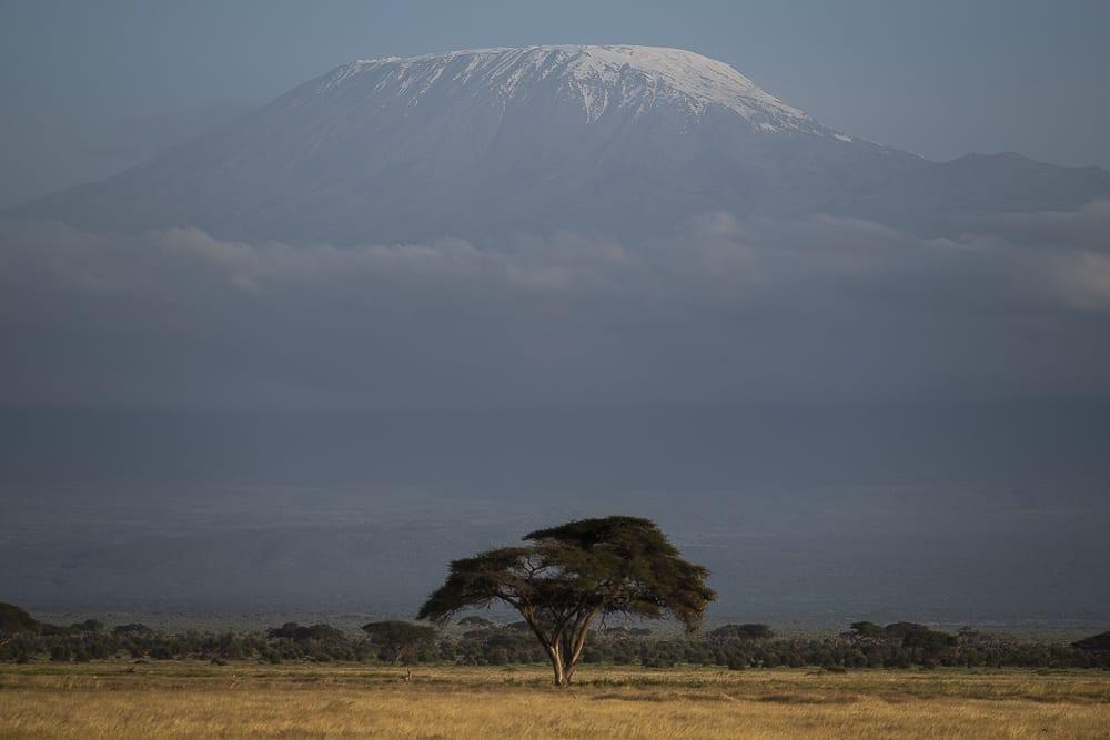 Viajar por el mundo haciendo fotografía - Kilimanjaro - Worldpackers