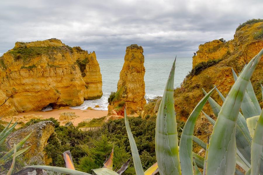 Natureza de Faro