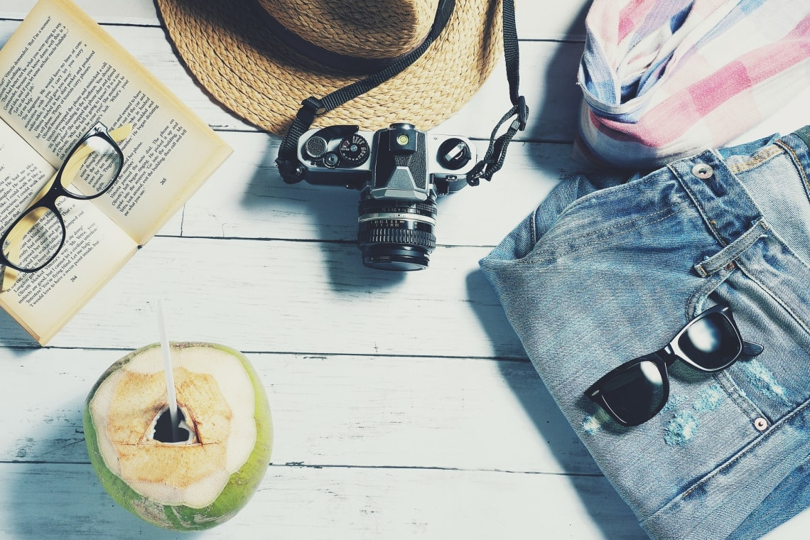 Book, camera, hat, sunglasses, and coconut