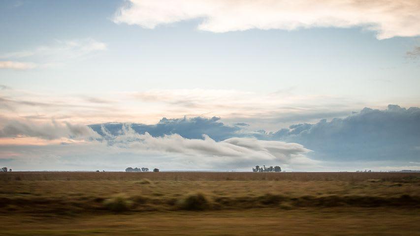 Cómo organizar un viaje por Argentina desde cero - Worldpackers - pampa argentina