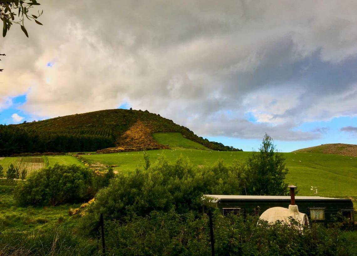 Hacer voluntariado en una granja orgánica en Nueva Zelanda: mi experiencia - Worldpackers - paisaje en una granja en Nueva Zelanda
