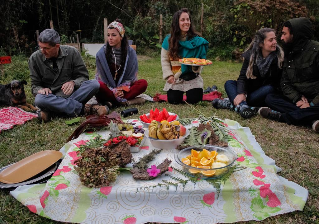 Espaço holístico voluntariado permacultura