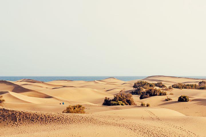 Mi experiencia como Worldpacker en Las Palmas de Gran Canarias, España - desierto gran canarias