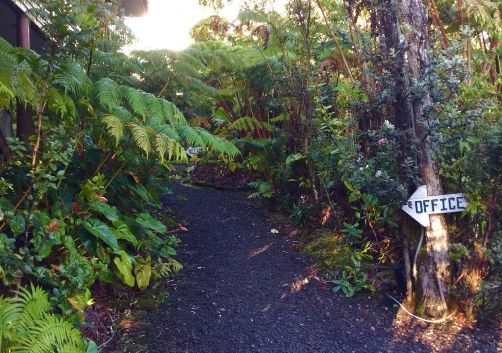 Best spring break destinations in the US: Hawaii