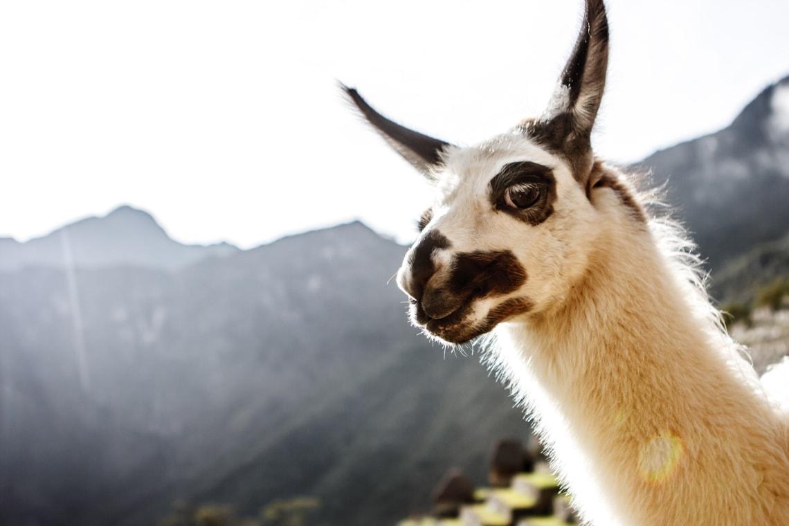 como ir para Machu Picchu gastando pouco