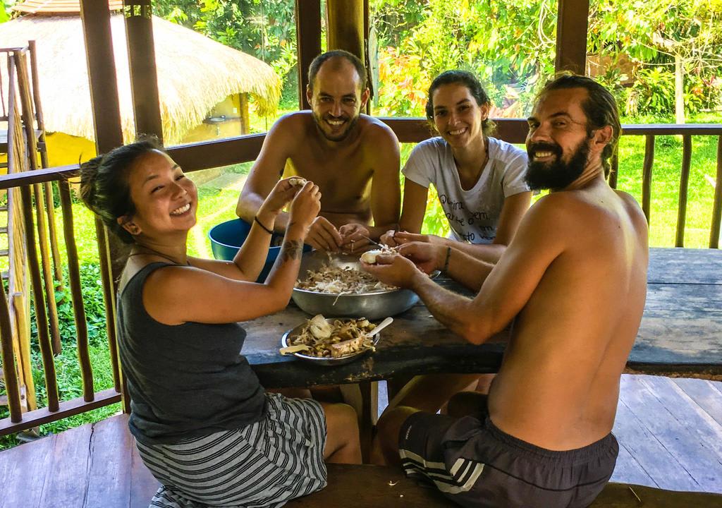 voluntariado no litoral de são paulo