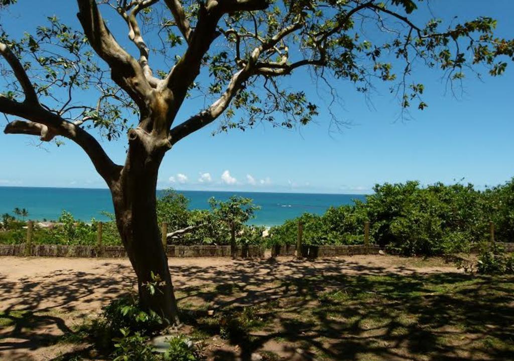 litoral sul da bahia nordeste