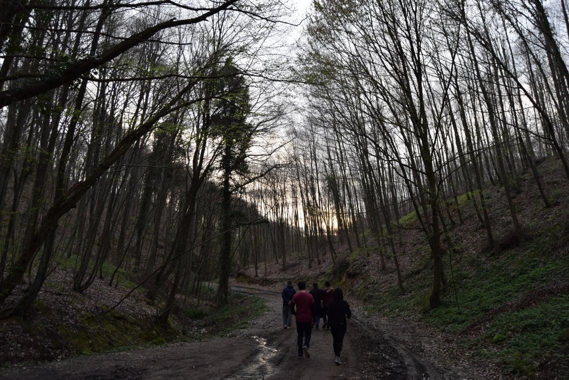 Todo lo que debes saber antes de viajar a Estambul - Worldpackers - bosque de Kemerburgaz en estambul