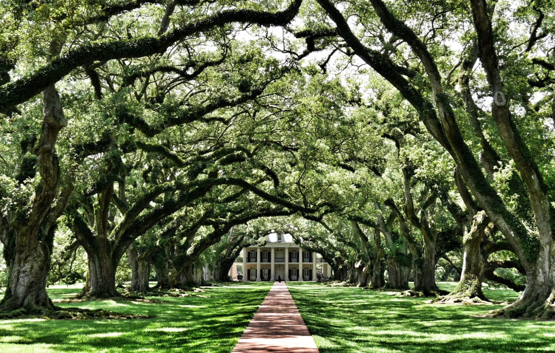 Best things to do in New Orleans: tour a Civil War era plantation