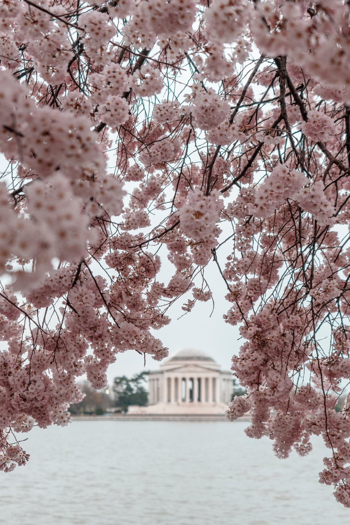 US City Guides: Washington DC