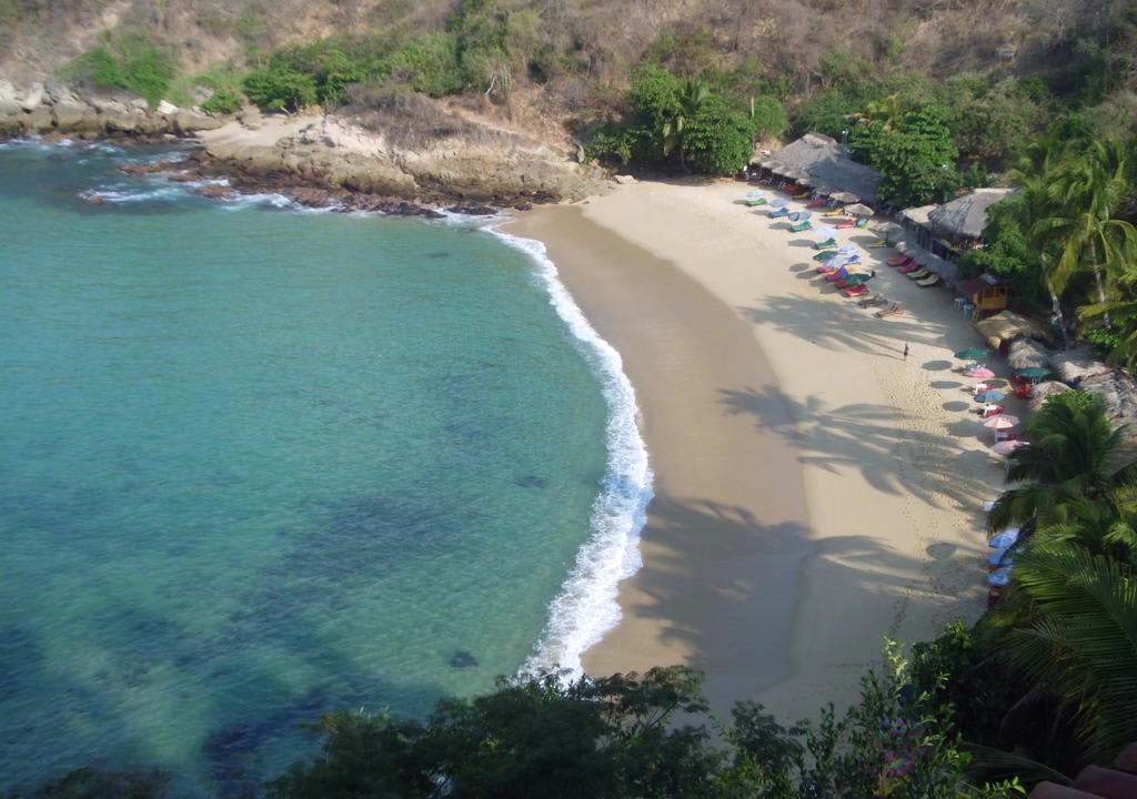 Use your handyman skills in Puerto Escondido, Mexico