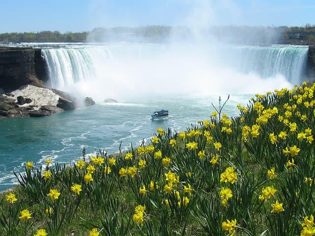 Paisagem da Cataratas do Niagara durante a primavera, cheia de flores
