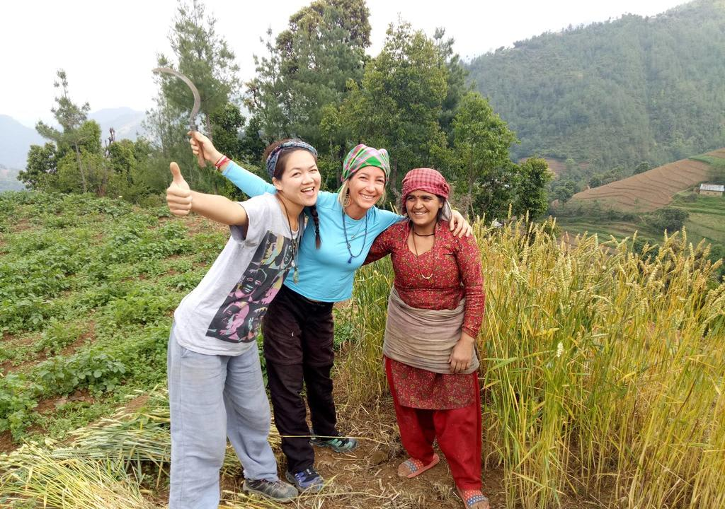Learn New bee-keeping skills in Nepal