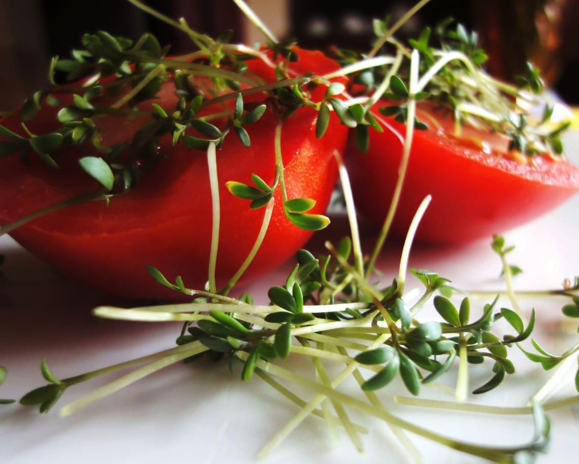Como se alimentar bem: legumes e brotos
