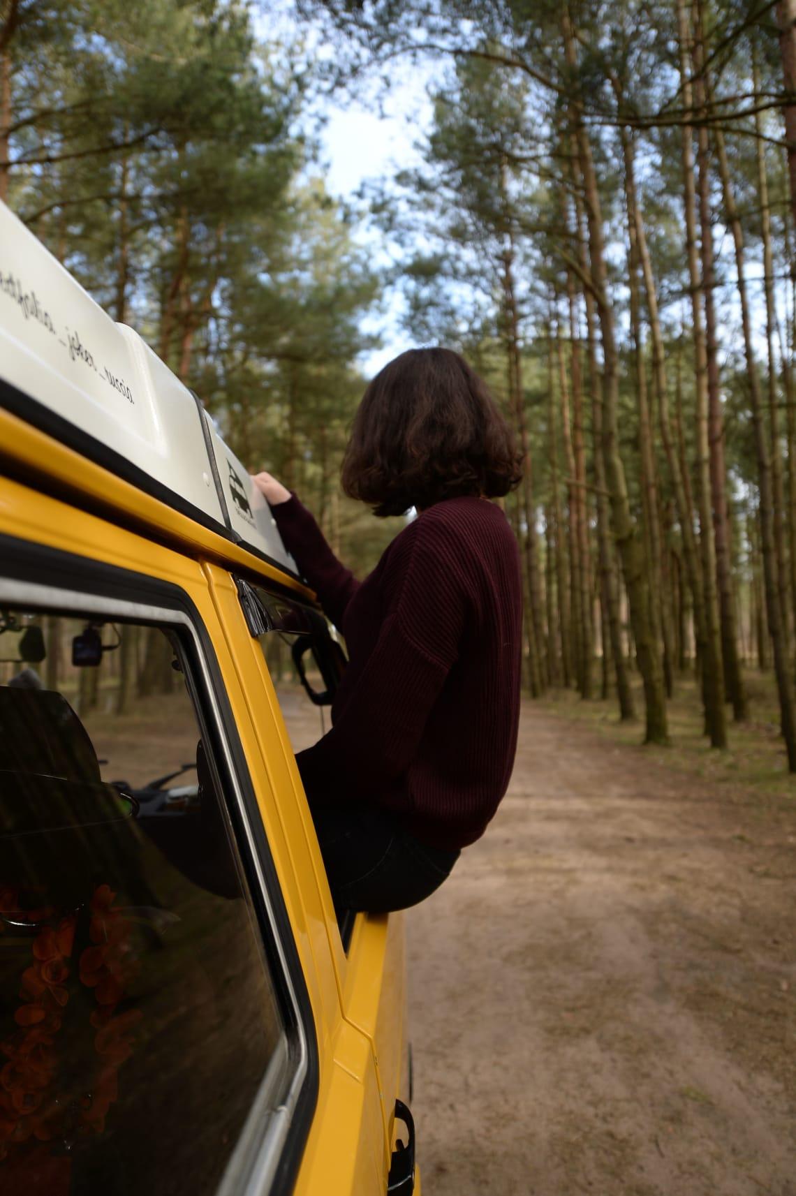 Traveler enjoying a road trip through tall tees