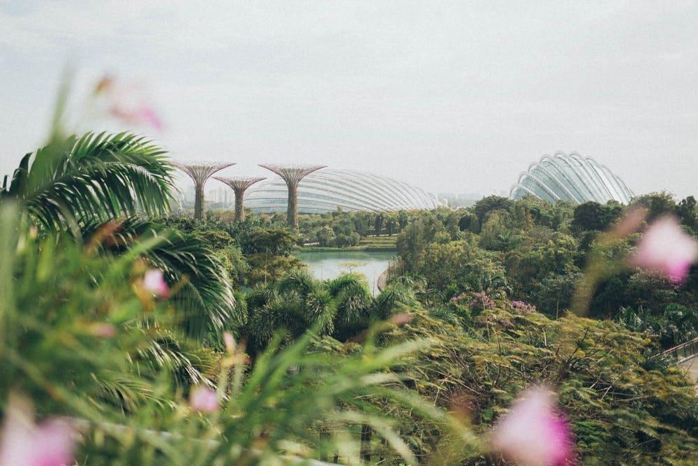 Todo lo que debes saber sobre las visas de los países del sudeste asiático - Worldpackers - jardines en singapur