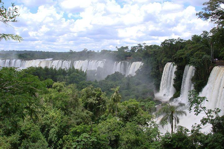 Guía para viajar a las cataratas de Iguazú con poco presupuesto - Worldpackers - cataratas de iguazú con la selva
