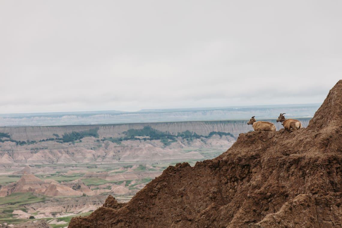 USA travel guide: South Dakota