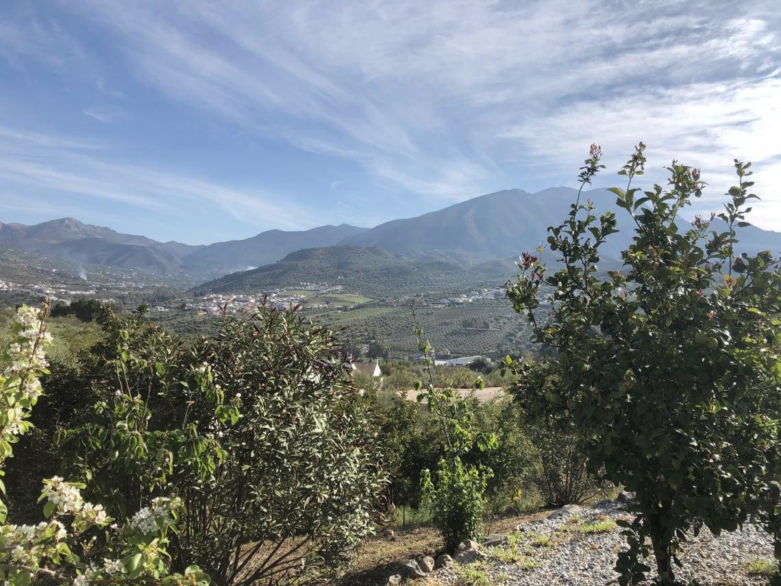 Mi experiencia como voluntario en un albergue rural en las afueras de Málaga - Worldpackers - Espacio cultural conviven