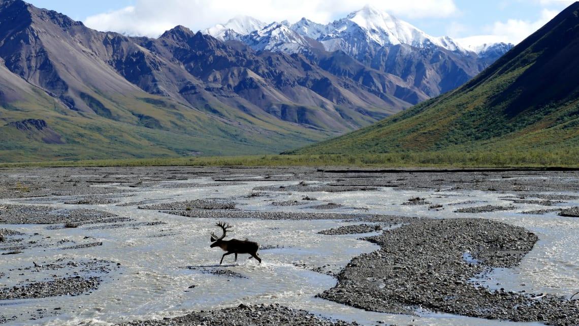 USA travel guide: Alaska