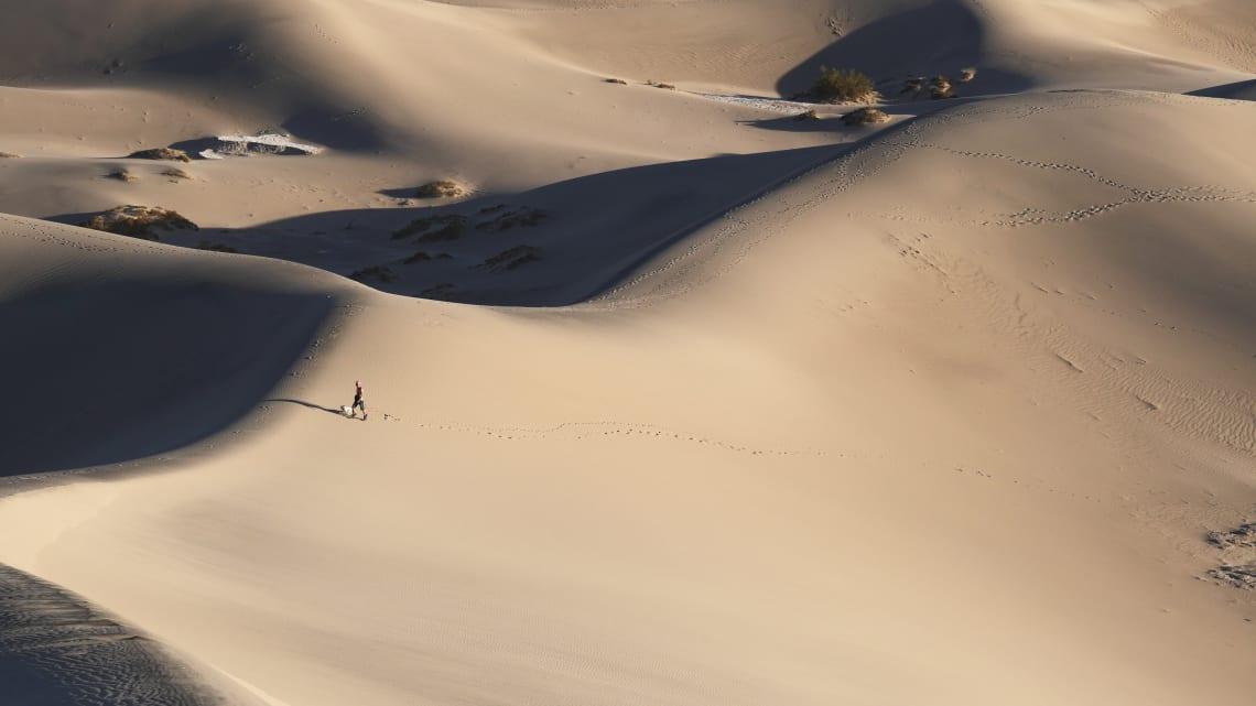 Solo traveler wandering in the desert