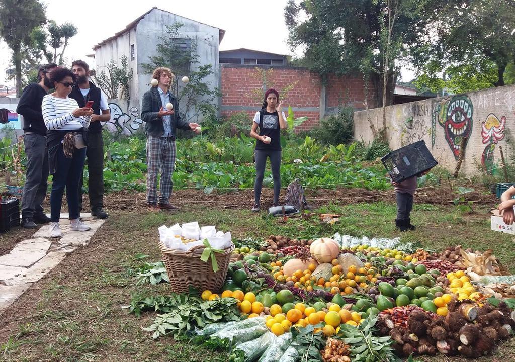 Coletivo Mãe na Terra, Curitiba, Brasil