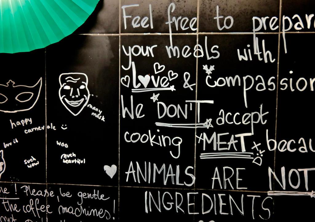 Mi renovadora experiencia de work exchange en Venecia, Italia - Worldpackers - hostal vegano en Venecia
