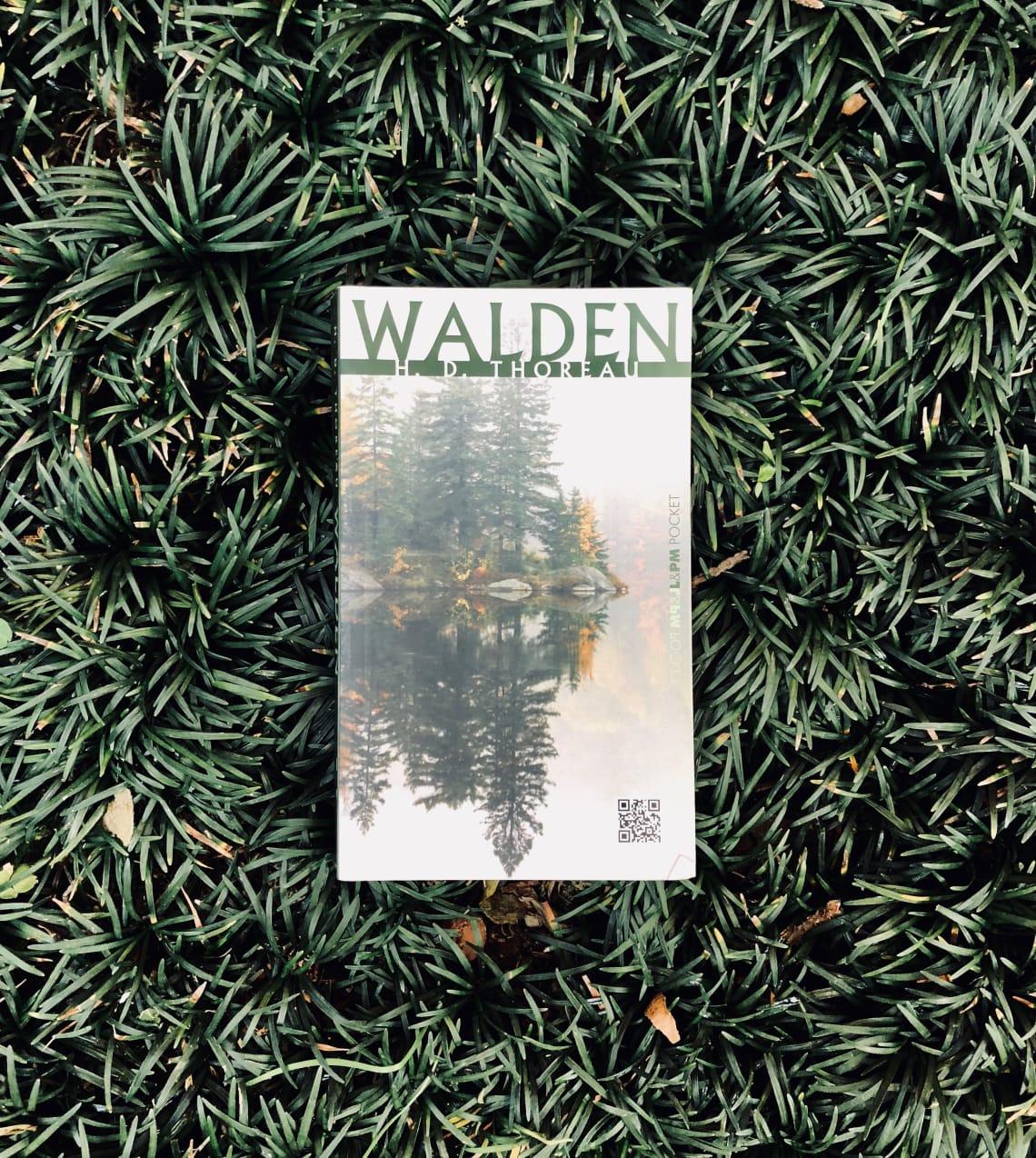 Walden, henry david thoreau