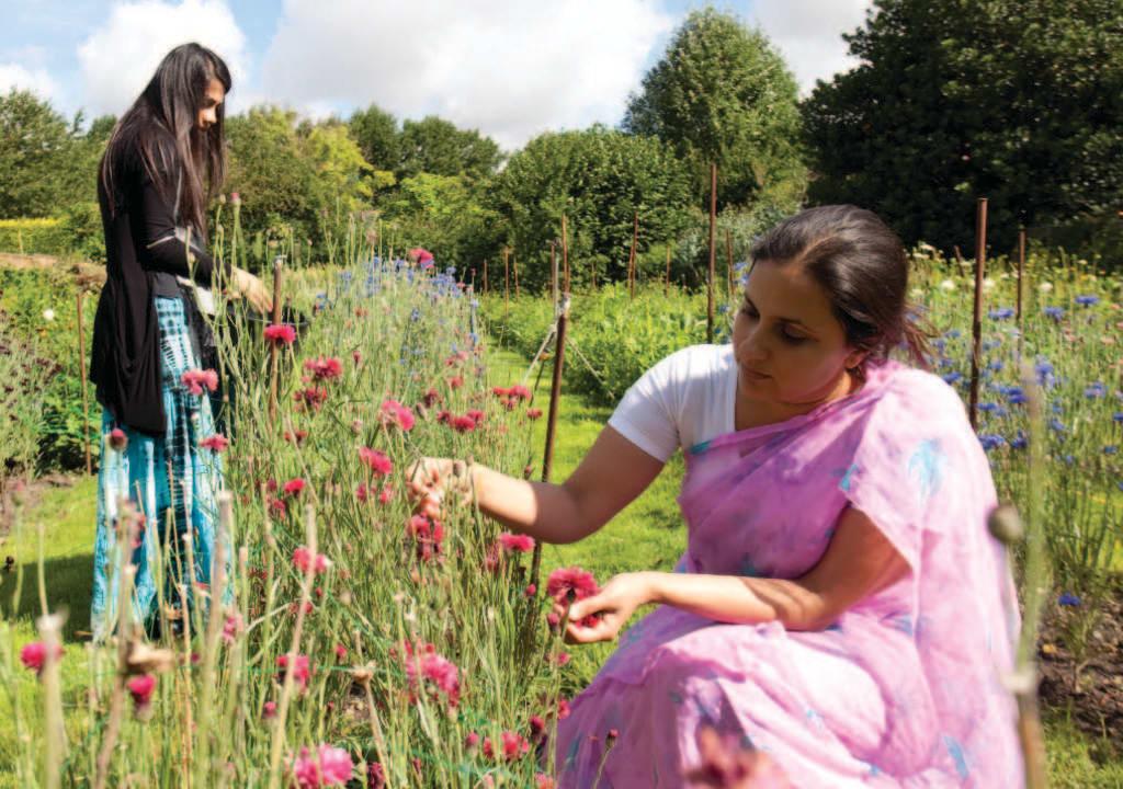 Sede do movimento Hare Krishna no Reino Unido aceita voluntários