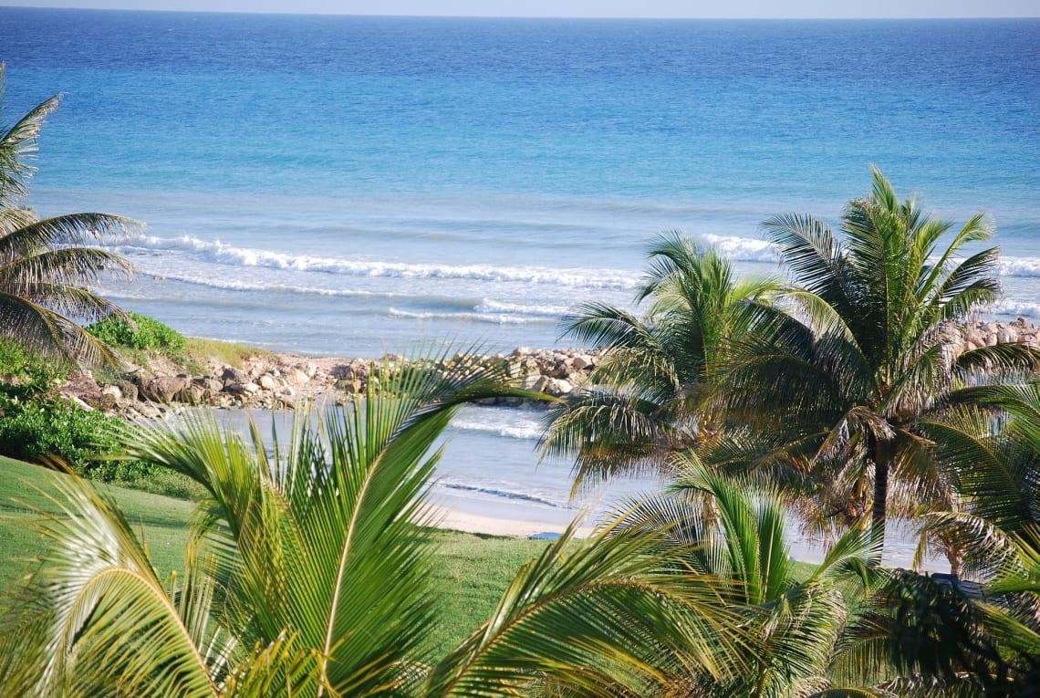 Experience Jamaica