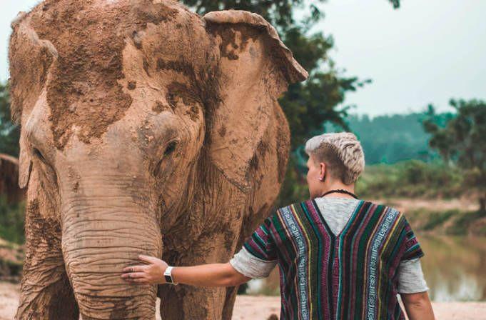Aptitudes necesarias para que te elijan como voluntario - Worldpackers - viajero voluntariando con elefante