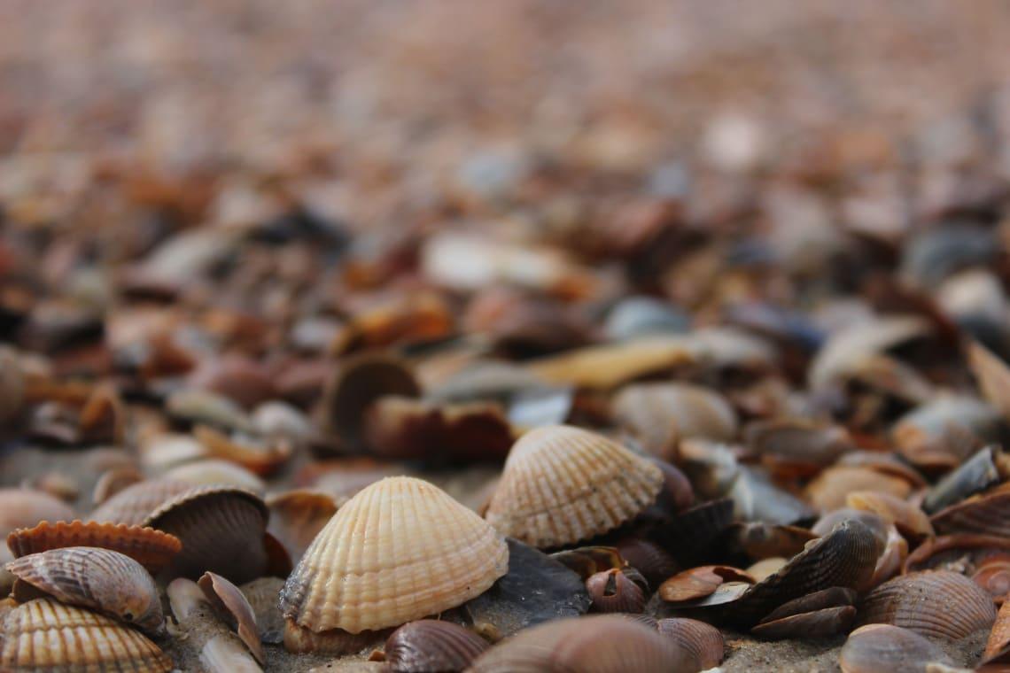 melhores praias de buzios
