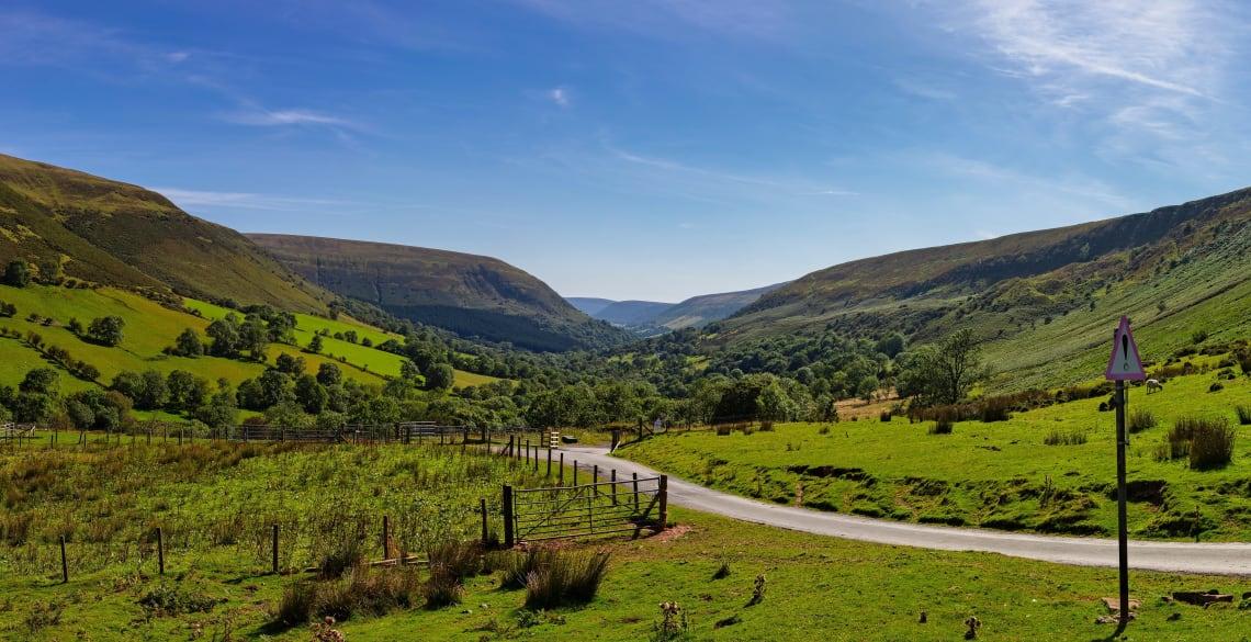 Farm volunteer opportunity in Wales