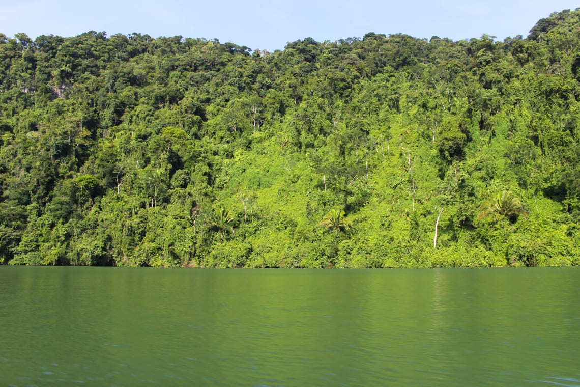Fun things to do in Guatemala: explore the wilderness near Rio Dulce