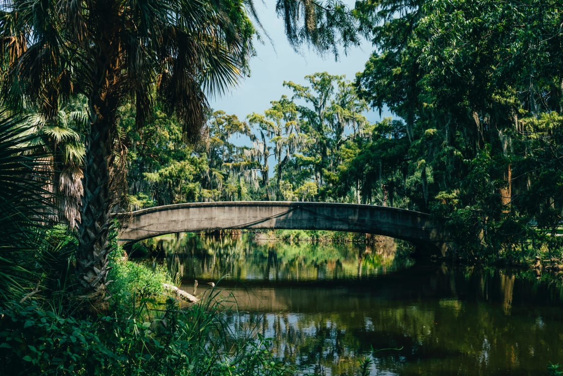 What to do in New Orleans: visit City Park