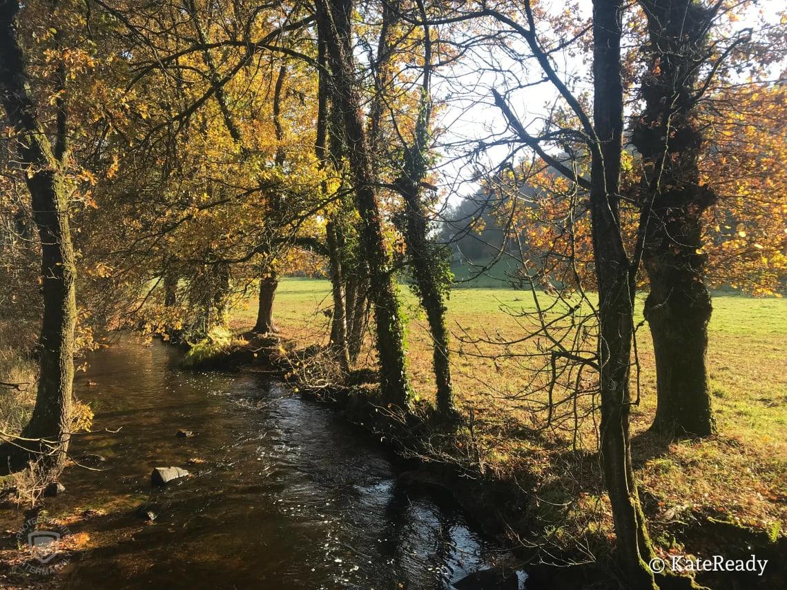Melrand Forest, France