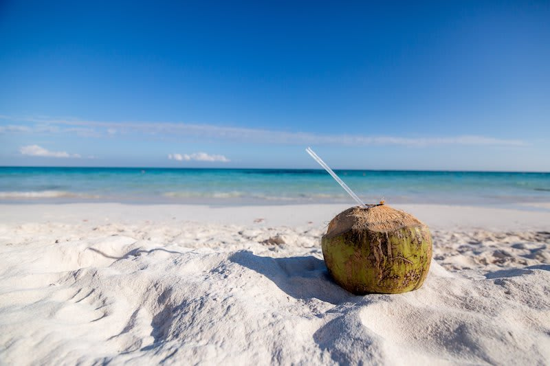 Beach and coconut