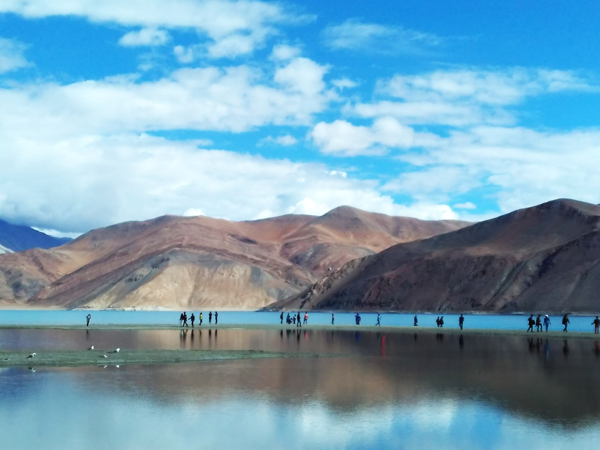 Different shades of the Pangong Tso